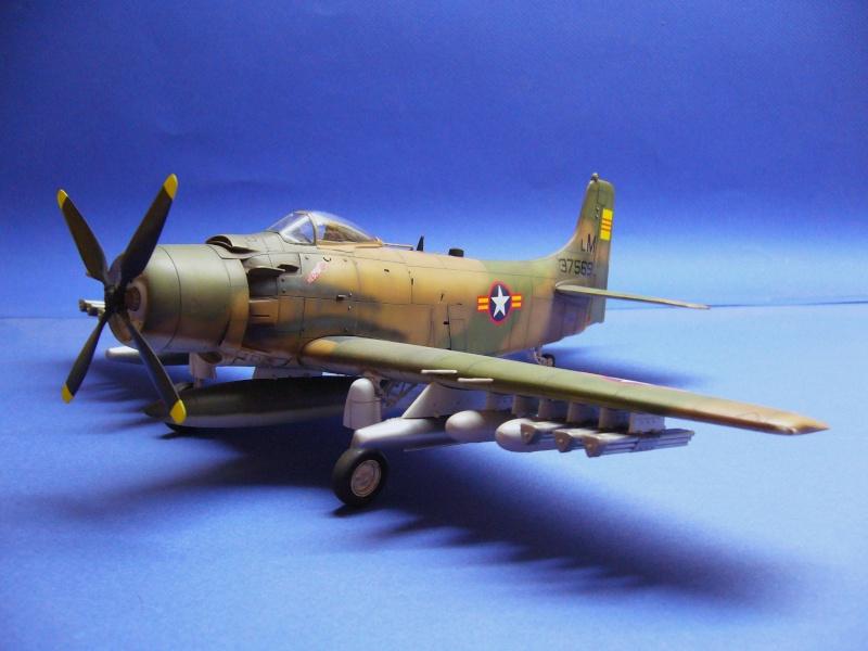 La vitrine de French Air Kit, les avions aux couleurs étrangères P1020367