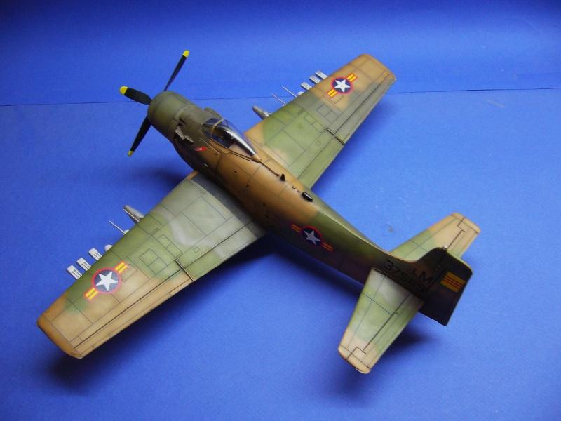 La vitrine de French Air Kit, les avions aux couleurs étrangères P1020368