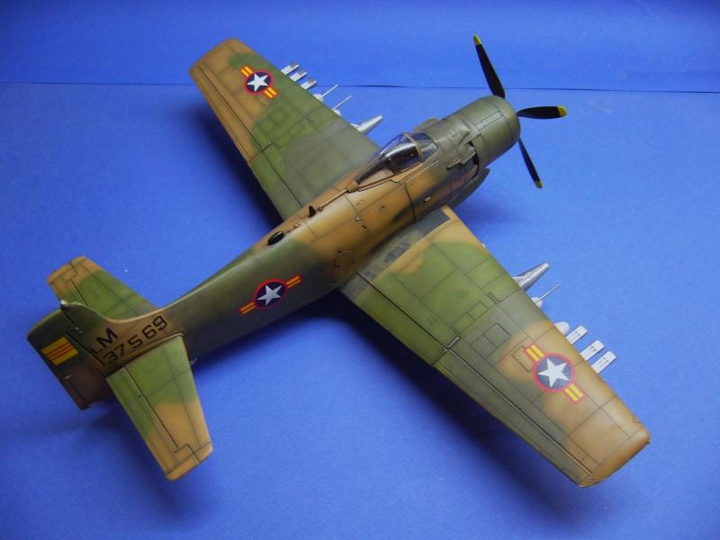 La vitrine de French Air Kit, les avions aux couleurs étrangères P1020369