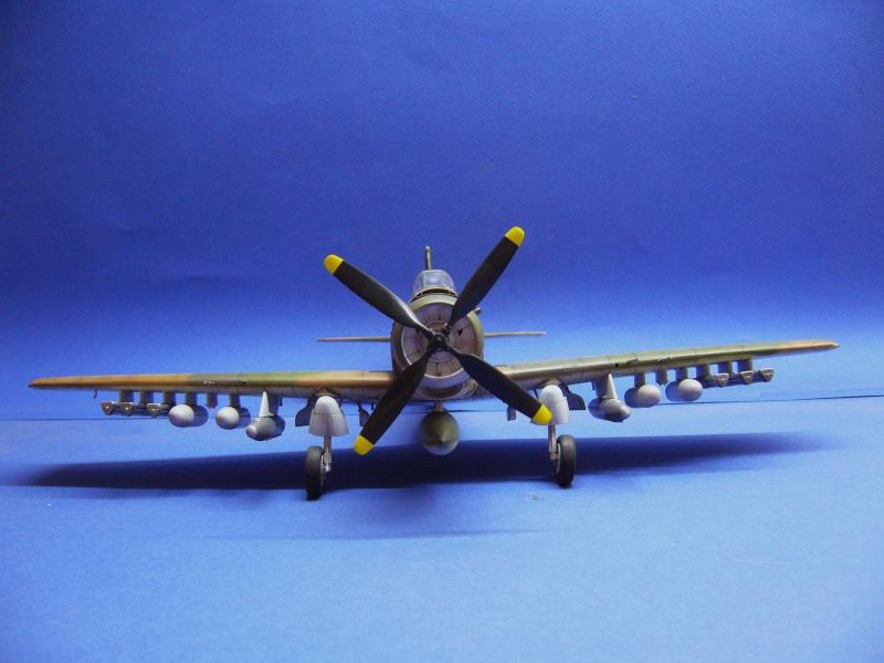 La vitrine de French Air Kit, les avions aux couleurs étrangères P1020370