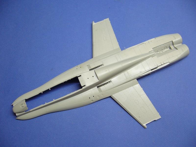 Un frelon dans la tempête F/A-18 A Hornet HB 1/48 P1020624