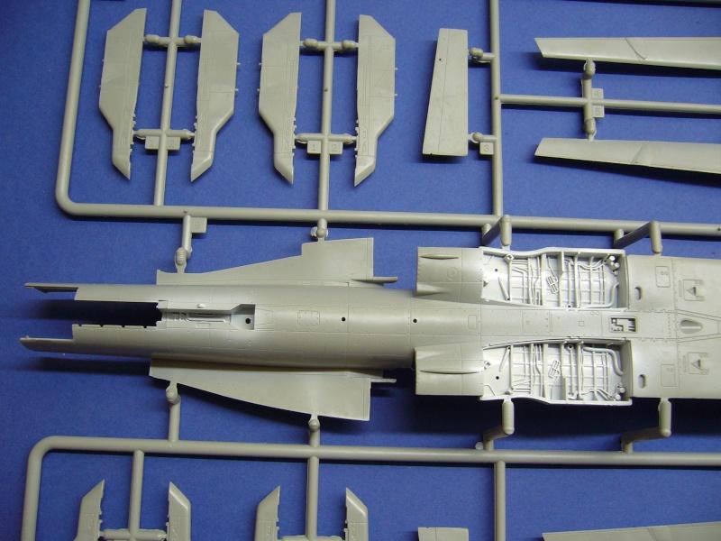 Un frelon dans la tempête F/A-18 A Hornet HB 1/48 P1020625