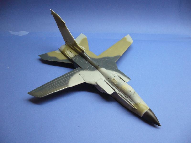 Panavia Tornado IDS, Marineflieger Italeri 1/48 P1020811