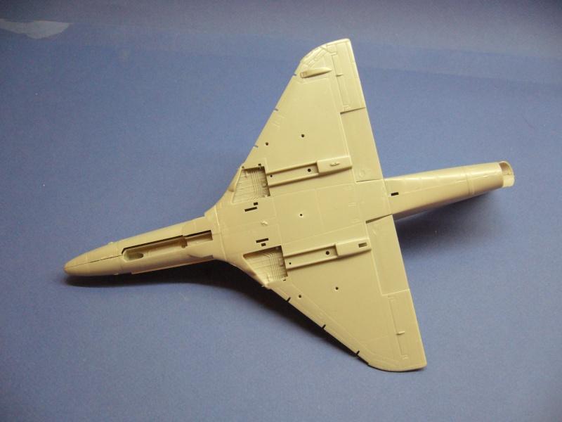 Douglas A-4C Skyhawk Hobbycraft, 1/48 P1020920