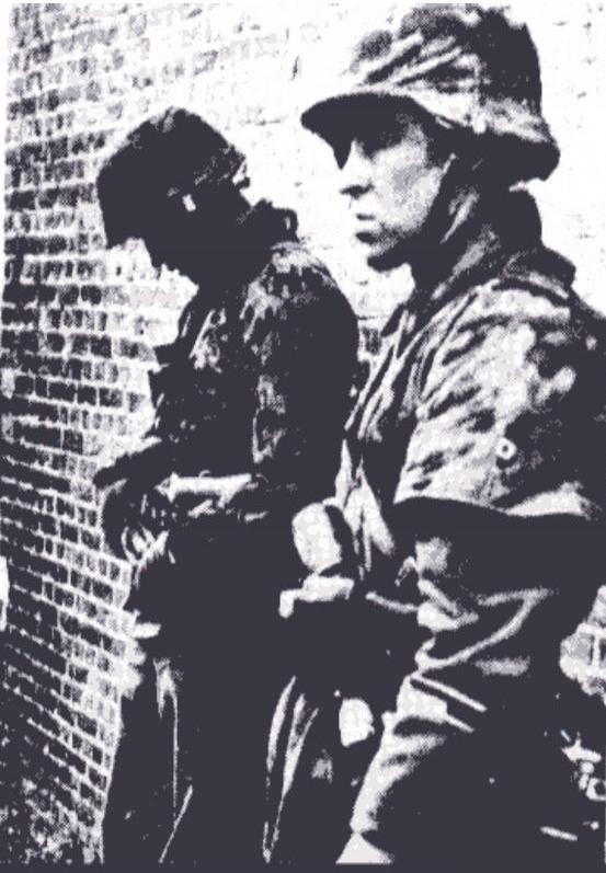 Rewiew - Les unités de la Waffen SS 111