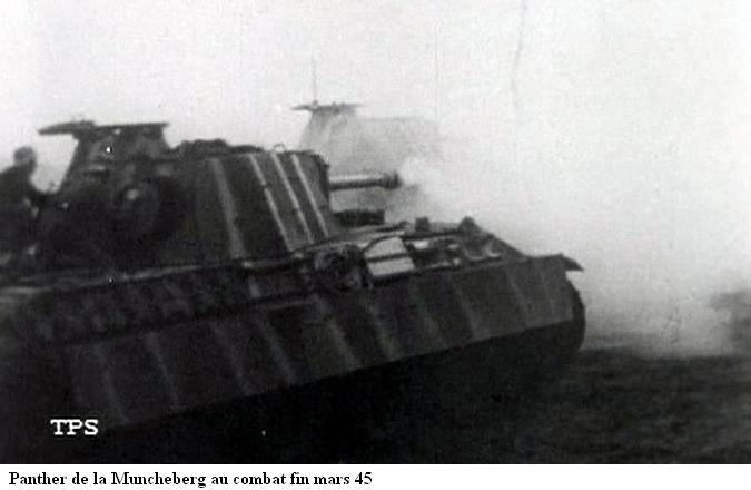 Panzerdivision Müncheberg 20120610