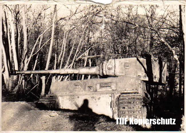 Le Tigre de vimoutiers - France 2czqd010