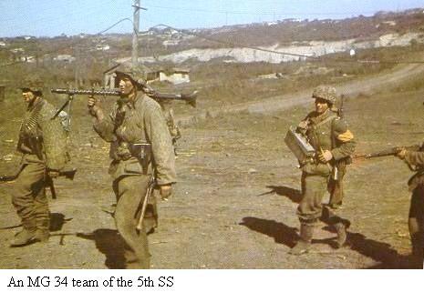 5e Panzerdivision SS Wiking 40497610