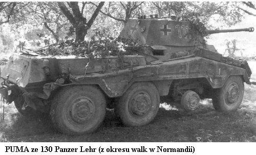 130e Panzerdivision - Panzer Lehr  5054ec10