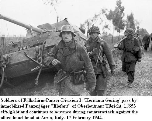 """Panzerdivision """"Hermann Göring"""" 55970210"""
