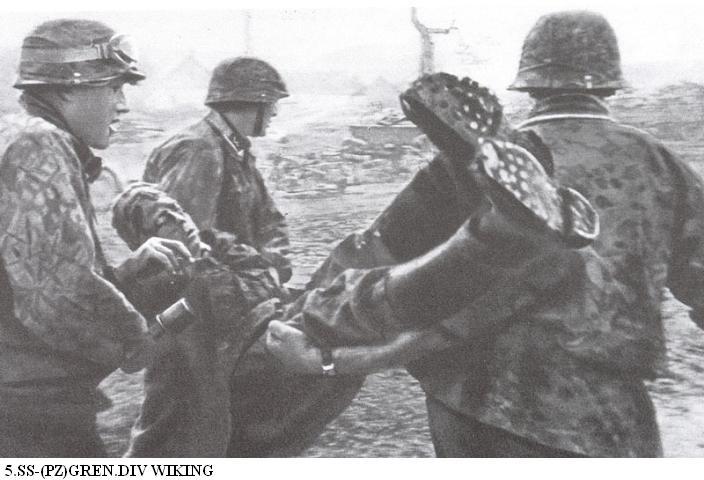 5e Panzerdivision SS Wiking 5_ss-w10