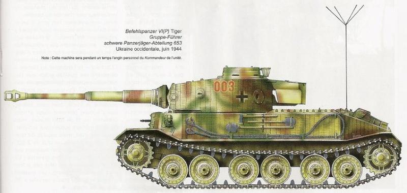 PORSCHE TIGER -  VK4501(P) / Porsche Typ 101 5n005610