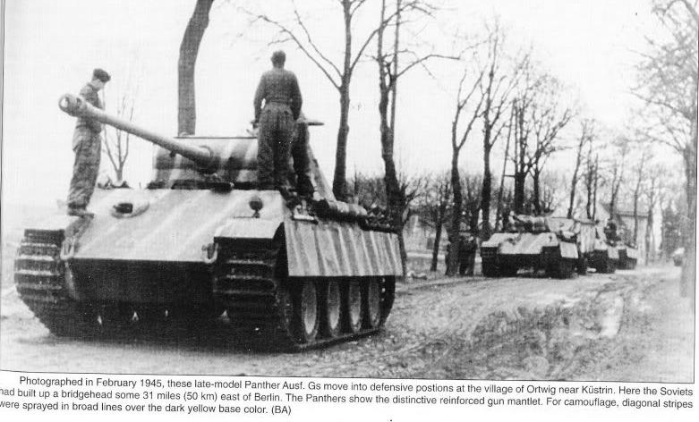 Panzerdivision Müncheberg Bandas10