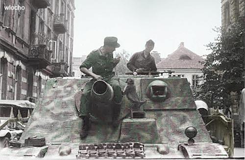Sturmpanzer IV - Brummbär ! Brummb14