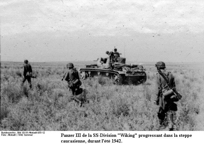 5e Panzerdivision SS Wiking Bunde104