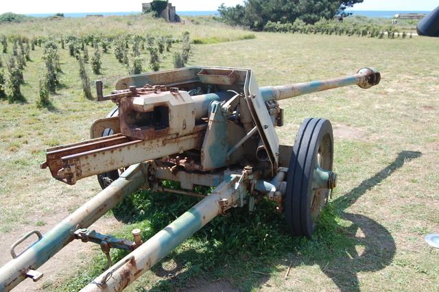 Pak 40 (Panzerabwehrkanone 40) - 75 mm Dsc05211