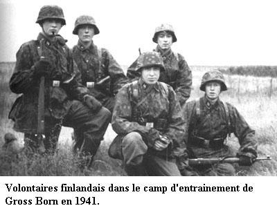 5e Panzerdivision SS Wiking Finnis11