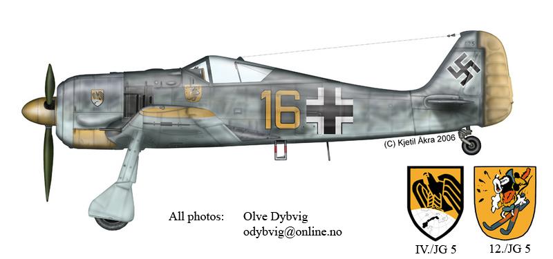 Epave Fw-190 - Norvege Fw190a10