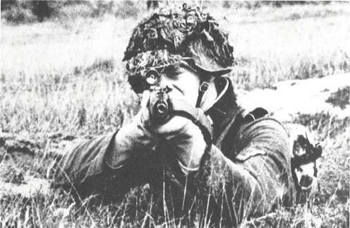 Walther Gewehr G43 G43bus10