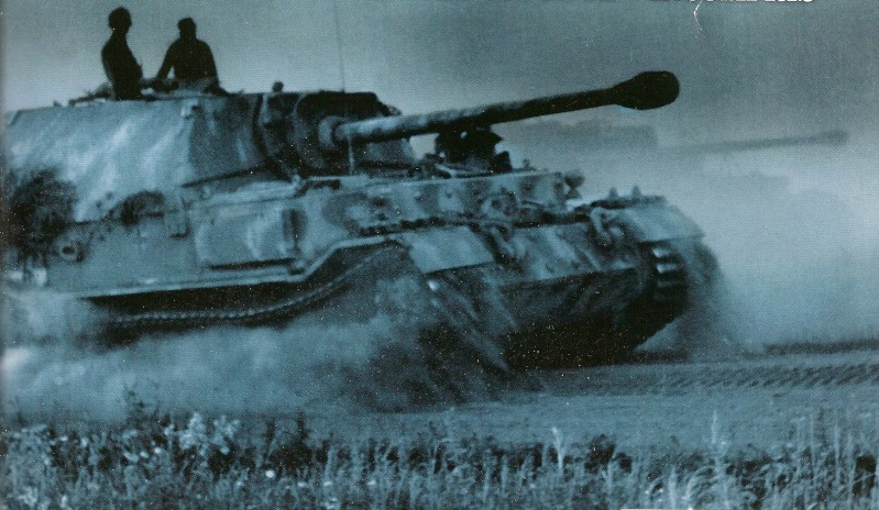 Panzerjäger Tiger Elefant/Ferdinant Numari38