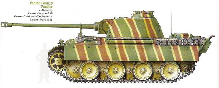 Panzerdivision Müncheberg Numari54