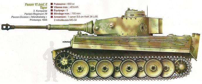 Panzerdivision Müncheberg Numari55