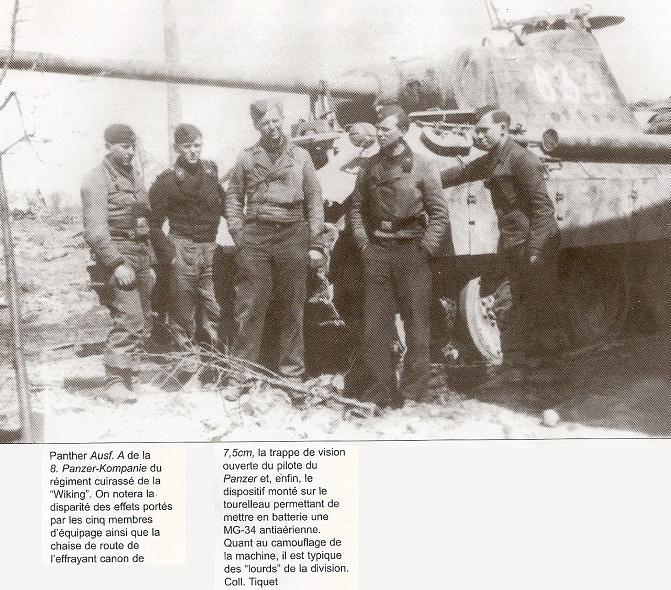 5e Panzerdivision SS Wiking Numari82