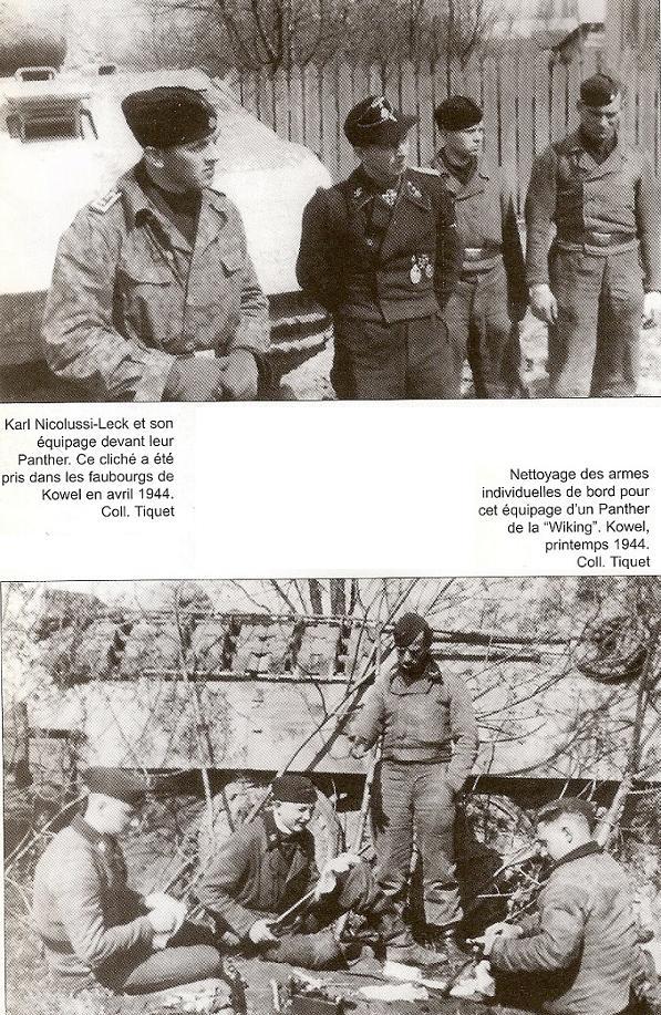5e Panzerdivision SS Wiking Numari83
