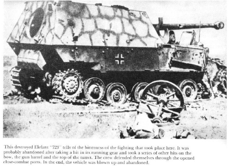 Panzerjäger Tiger Elefant/Ferdinant Osprey10