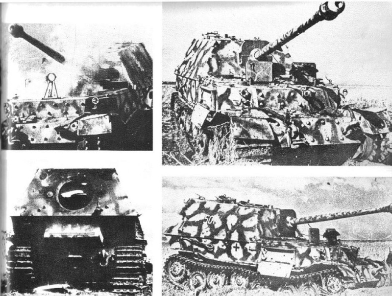 Panzerjäger Tiger Elefant/Ferdinant Osprey11