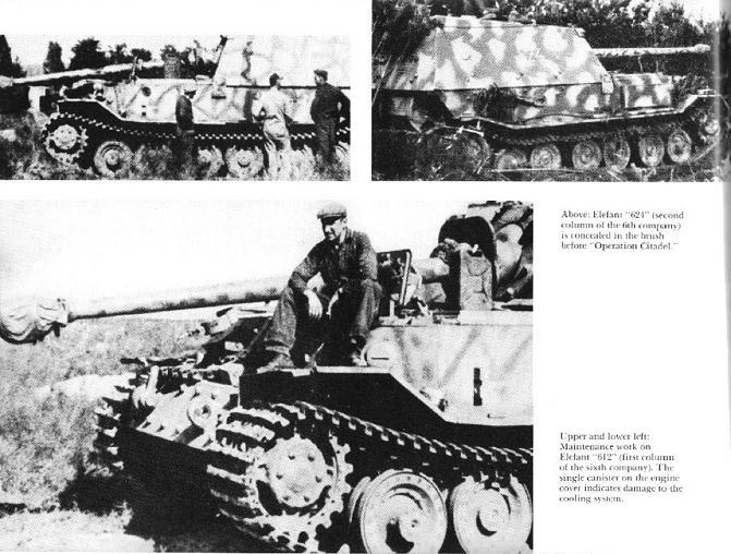 Panzerjäger Tiger Elefant/Ferdinant Osprey12