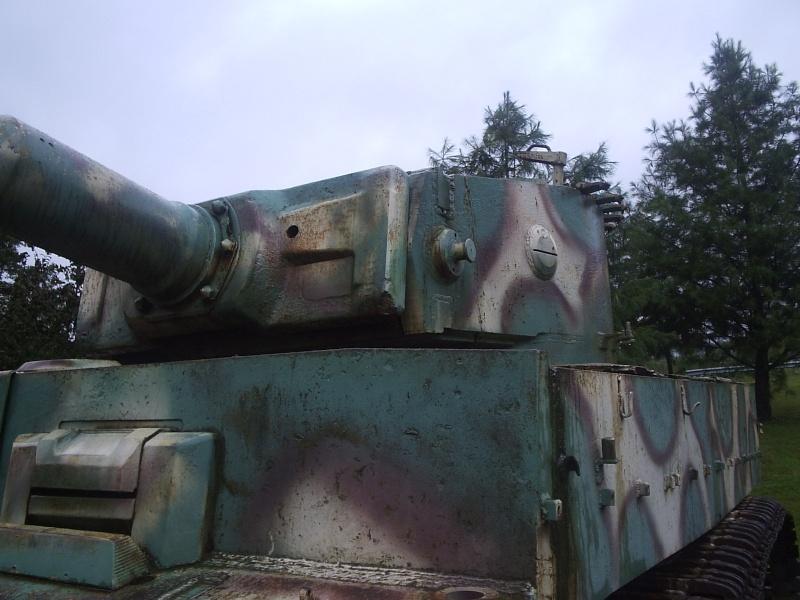 Le Tigre de vimoutiers - France P8130712