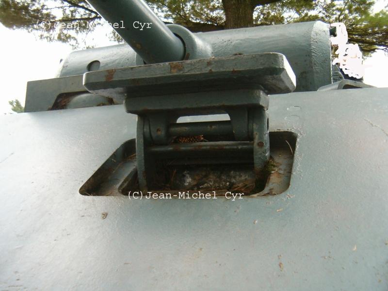 PANTHER AUSF. A - CAMP BORDEN - Canada Panth117