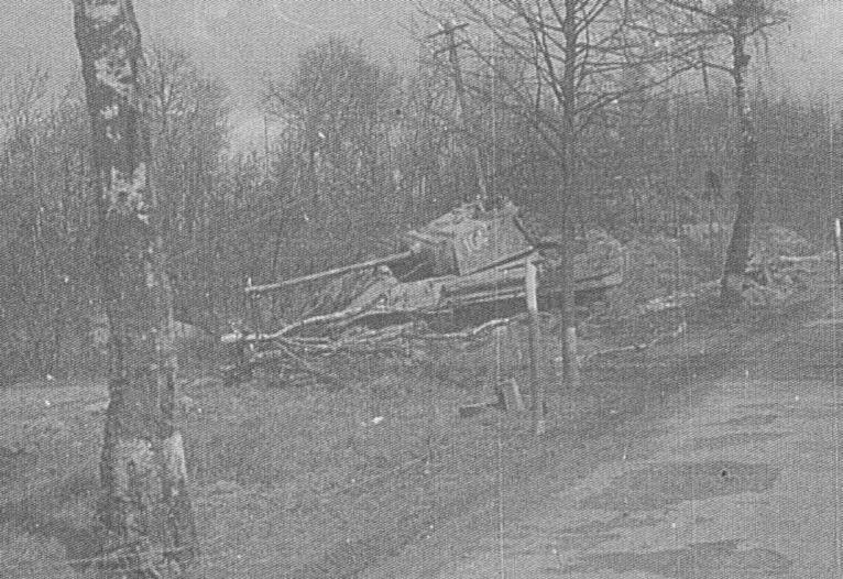 Panzer Wreck - Normandie 1944 Panth121