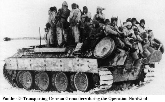 Operation NORDWIND - Janvier 1945 Panth137
