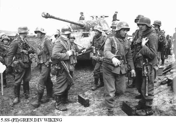 5e Panzerdivision SS Wiking Panze135