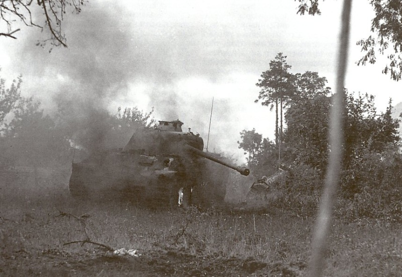 Panzer Wreck - Normandie 1944 Panzer56