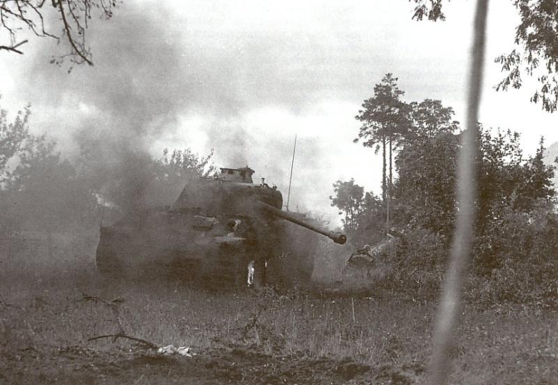 Panzer Wreck - Normandie 1944 Panzer66