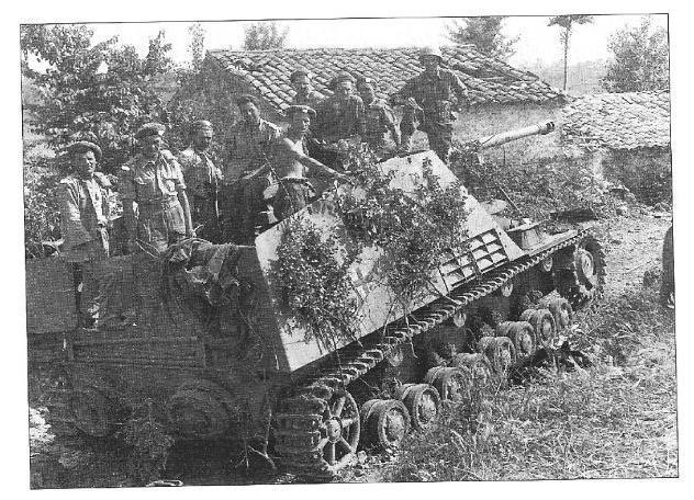 NASHORN !!! Panzer81