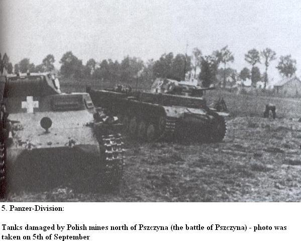 5e PANZER DIVISION Pszczy10