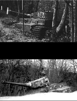 Le Tigre de vimoutiers - France Rside110