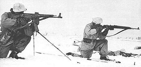 Walther Gewehr G43 Stg44g10