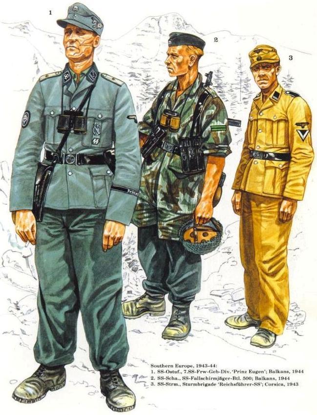Waffen SS - les Grades The_wa18