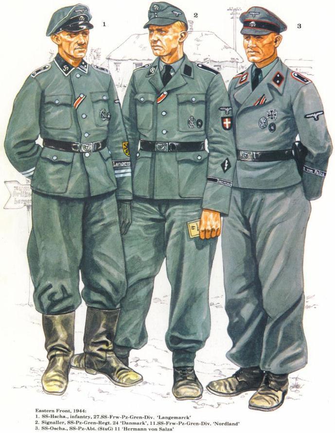 Waffen SS - les Grades The_wa19