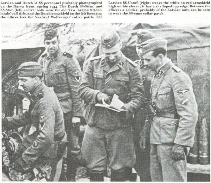 Waffen SS - les Grades The_wa22