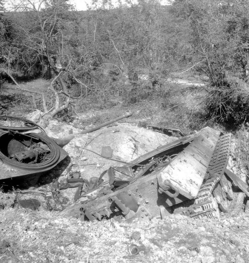 Panzer Wreck - Normandie 1944 Tiger_21