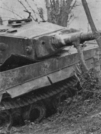 Le Tigre de vimoutiers - France Tigre110