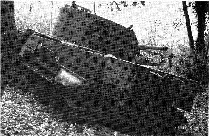 Le Tigre de vimoutiers - France Vimrea10