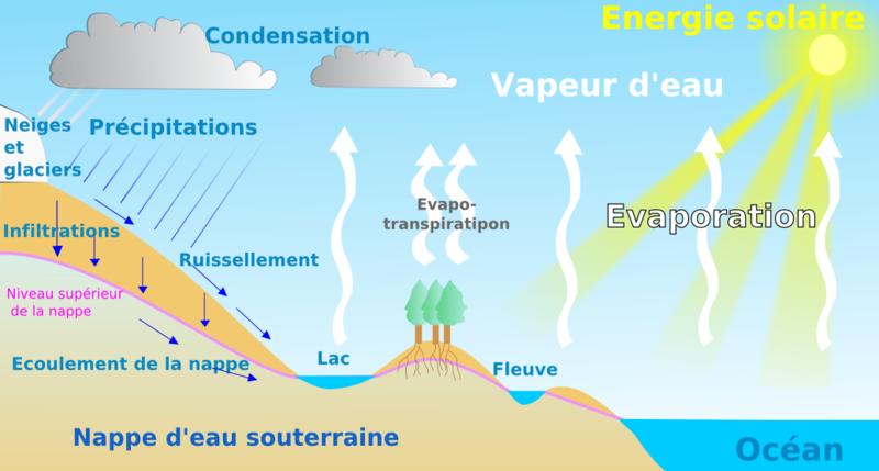 Le cycle de l'eau 800px-10