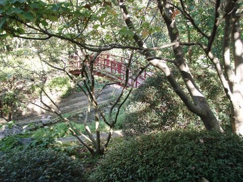 Visite du jardin Albert Kahn Autre_11